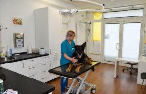 Im ersten Behandlungsraum finden hauptsächlich die Untersuchungen statt