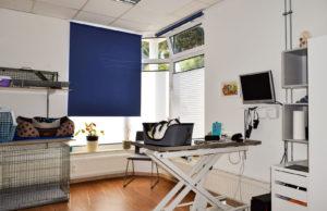 Im zweiten Raum können sich meine Patienten nach einer OP ausruhen. Hier finden auch Laserbehandlungen statt und die Tierheilpraktikerin Frau Anja Kube empfängt hier nach Terminabsprache ihre felligen Patienten